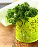 fresh bunch kitchen herb parsley in pot