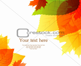 Autumn leafs back