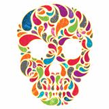Colorful  vector skull
