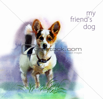 Watercolor Animal Collection: Dog