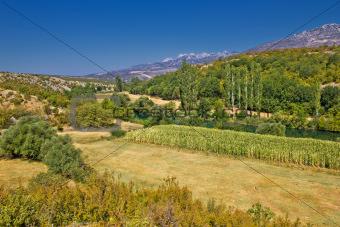 Green landscape of Zrmanja river valley