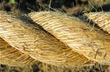 Flax Rope