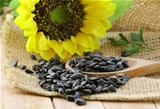 sunflower seeds with a flower on  background