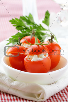 appetizer of stuffed tomatoes (soft cheese and parsley)
