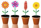 vector flowers in pots