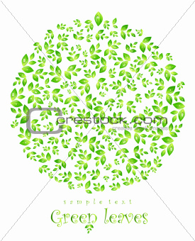 Green nature leaf concept