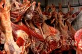 mutton hanging in cold storage