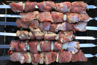 Appetizing meat on skewers