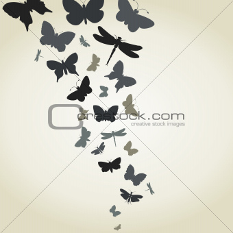 Flight of butterflies