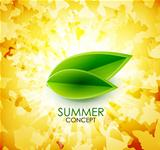 Summer leaf shiny background
