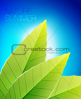 Green nature leaf background