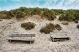 Two Wooden benches at the seaside