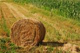 hay bale
