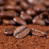 Macro shot of coffee beans