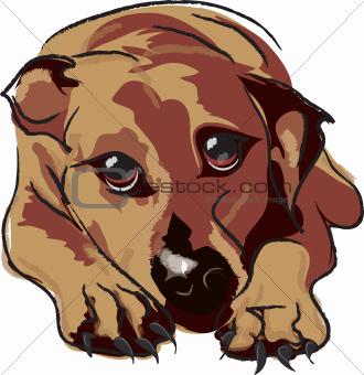 Cute vector dog