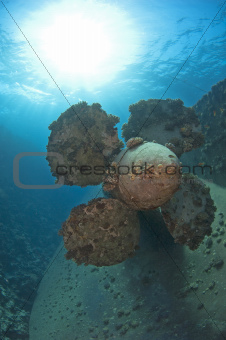 Propeller on a shipwreck