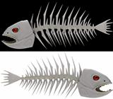 skeleton of a fish