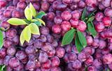 Fresh grape fruit in the market