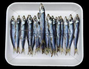 Tray of Anchovies At Market