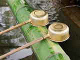 Purification Ladles At Shrine