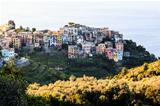 The Medieval Village of Corniglia at Morning, Cinque Terre, Ital