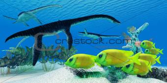 Plesiosaurus Coral reef
