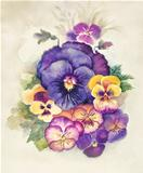 Watercolor Flora Collection: Viola Tricolor