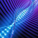 DNA High Tech