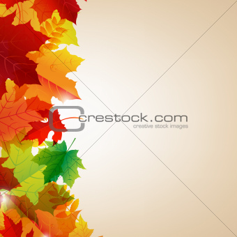 Autumn Leaves Border With Bokeh