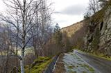 run-down road in rural landscape
