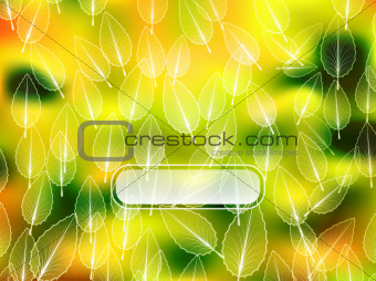 Autumn leaves blur background