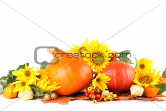 Autumn arrangement with Red Kuri pumpkins and sunflowers