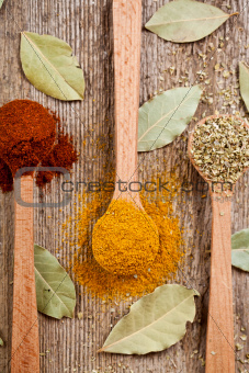 three spices in wooden spoons