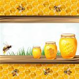 Landscape frame with glass jar bees