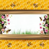 Bees and honeycombsa