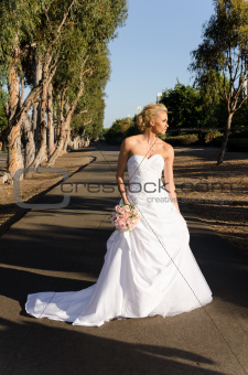 Gorgeous bride in wedding dress