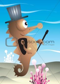 Seahorse magician