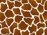 Giraffe marking