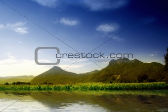 Green hill with blue sky. Summer landscape