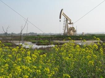 oil rig in wetlands