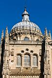Dome of the Salamanca cathedral