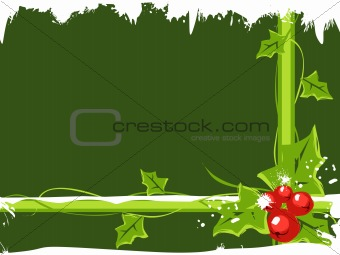 christmas holly berries with snow on green background