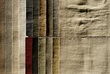 Wool sampler