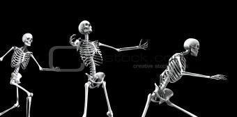 Skeleton Group