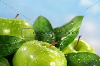 Green apples against a sunny blue sky