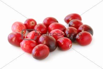 Cranberries macro