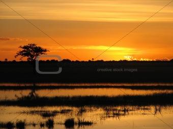 Flodded sunset