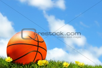 Basketball on the grass
