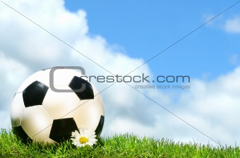 Soccerball with daisy against a blue sky