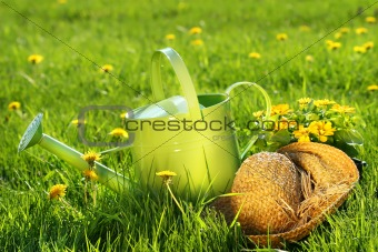 Watering can in the grass
